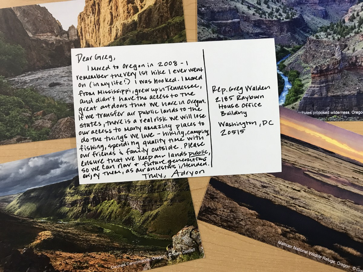 Picture a postcard writting to a representative