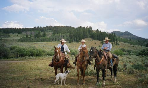Range riders hired by Keystone Conservation and the Madison Valley Ranchlands Group keep livestock safe and wolves alive.