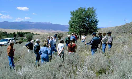 Madison Valley Ranchlands Group