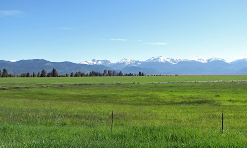 Nature Conservancy, Montana Field Office